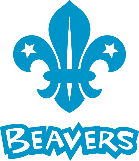 Visit the Beavers Page...