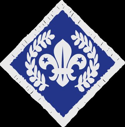 Cheif Scout's Diamond Award
